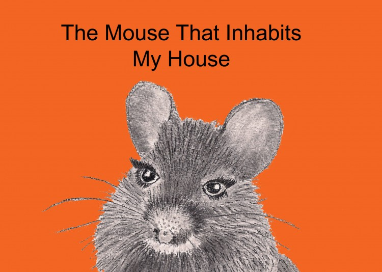 The Mouse That Inhabits My House